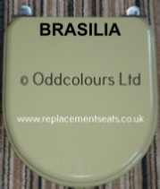 Resin Replica Brasilia Seat