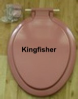 Kingfisher-Cameo.JPG